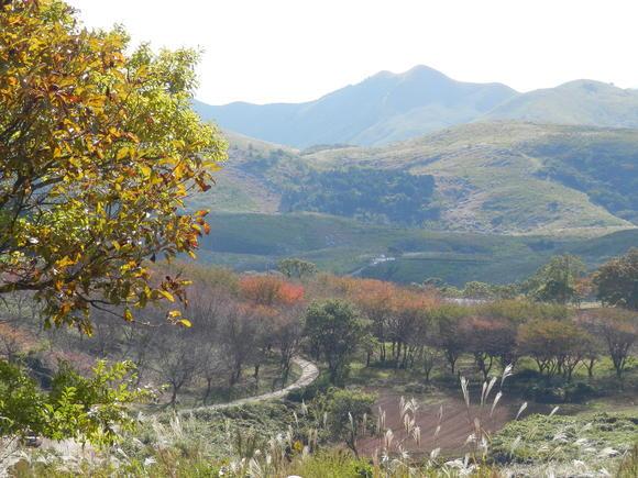秋の風と 匂い_a0125419_18392015.jpg