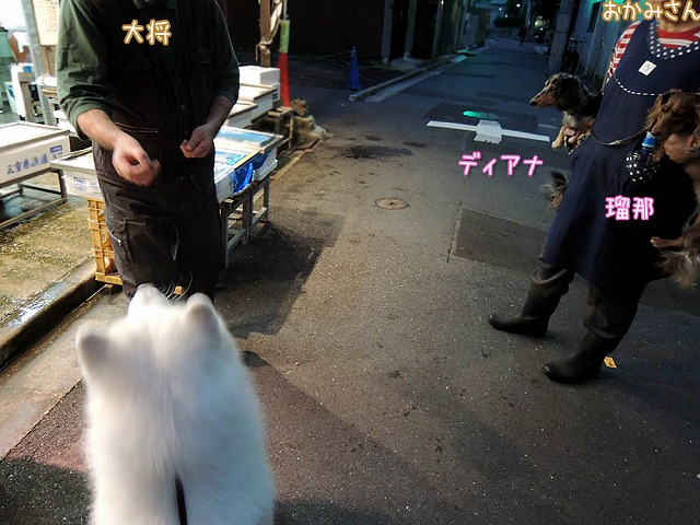 居酒屋・黒岡亭_c0062832_71028100.jpg