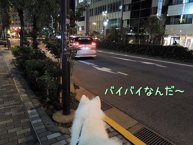 居酒屋・黒岡亭_c0062832_711589.jpg