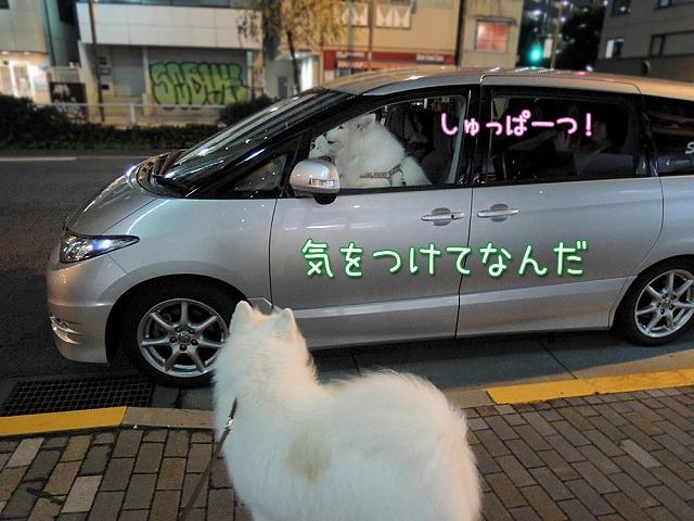 居酒屋・黒岡亭_c0062832_752511.jpg