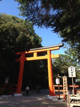 下鴨神社 はねず色の申餅(さるもち)_e0134337_17104673.jpg
