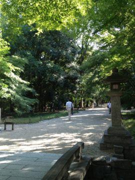 下鴨神社 はねず色の申餅(さるもち)_e0134337_1794378.jpg