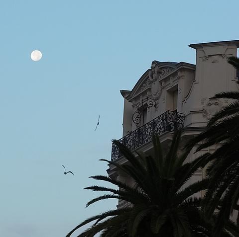 朝、沈みゆく月 ( Ce matin avant son dodo ) …… 。_b0287748_2352710.png
