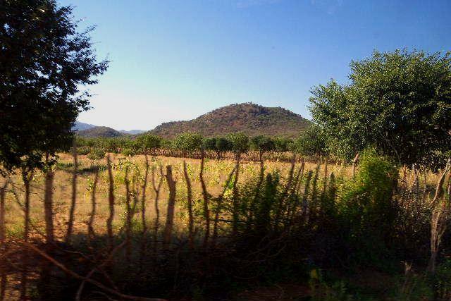 ナミビアの旅(31) オプウォのロッジからヒンバ族の村へ_c0011649_0322885.jpg