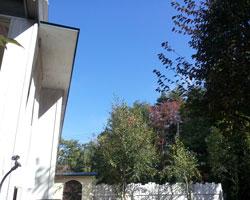 秋の空は・・・_d0050155_9304180.jpg