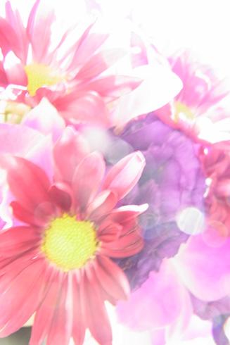 f0135155_15211972.jpg