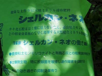 熊本梨 お礼肥えと枝抜き作業_a0254656_17361810.jpg