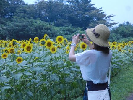 夏の思い出 おおるりグループに泊まる_d0123163_10502163.jpg