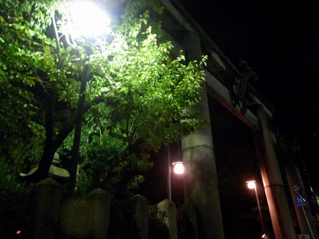 京都   夕食  (鉄板焼き かな )_d0105967_20211642.jpg