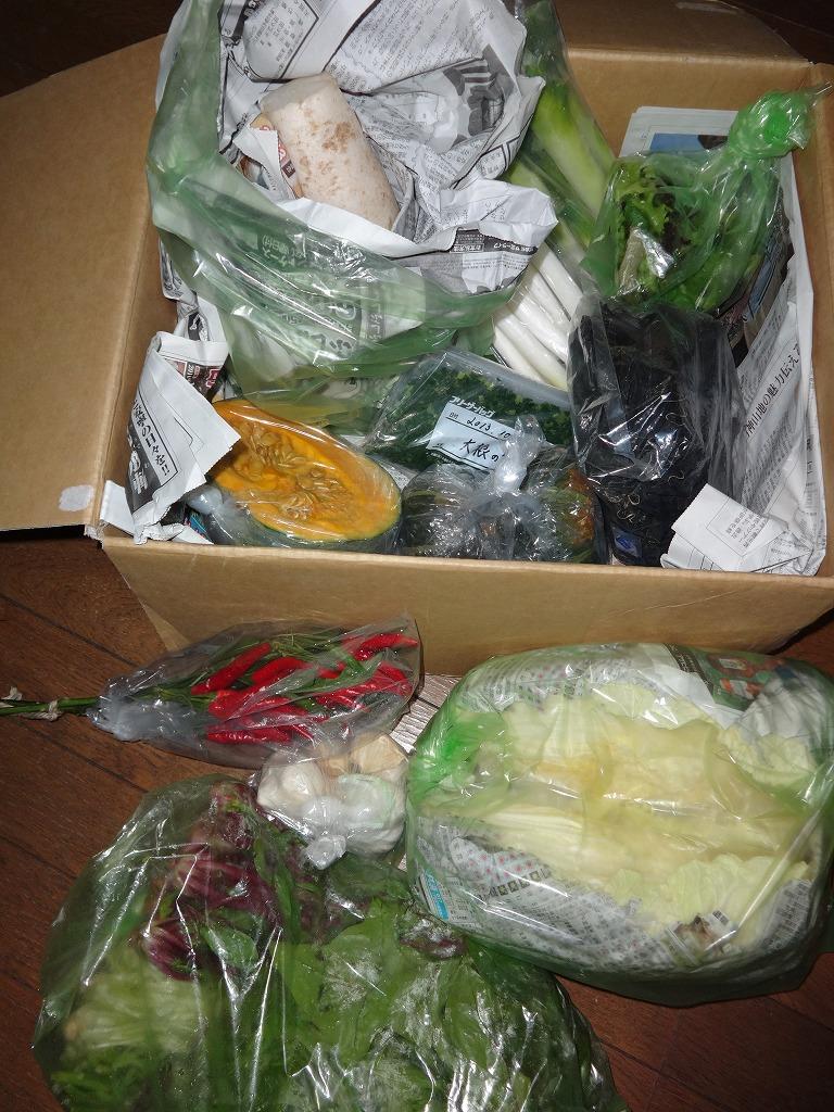 は?無農薬野菜を買った?うちにあるじゃない BYお袋 2_d0061678_1134764.jpg