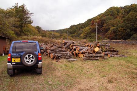 秋深し 生きる為にも 木を伐るか_f0145483_21142790.jpg