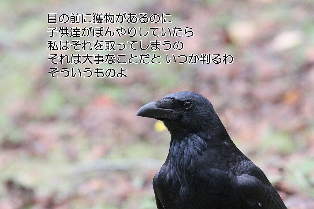 b0174191_20571166.jpg