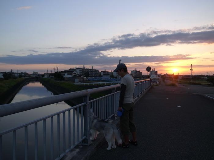 ロング散歩への道_c0049299_14383622.jpg