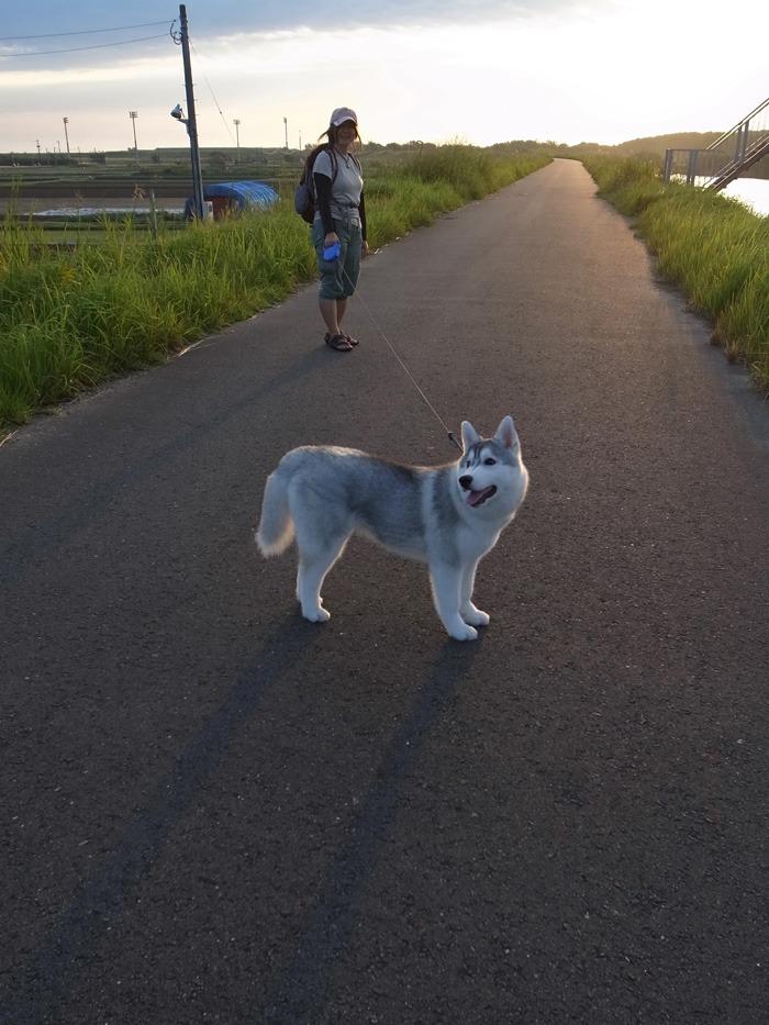 ロング散歩への道_c0049299_143942100.jpg