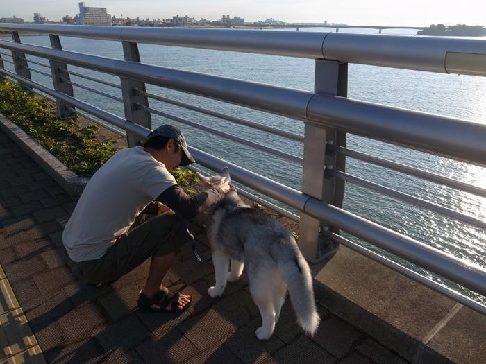 ロング散歩への道_c0049299_14463953.jpg