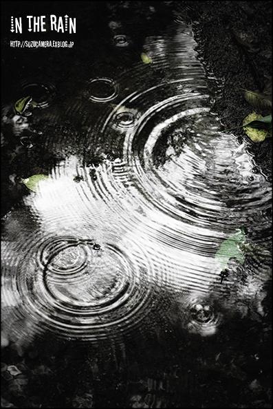 雨降りDAY_f0100215_22293278.jpg