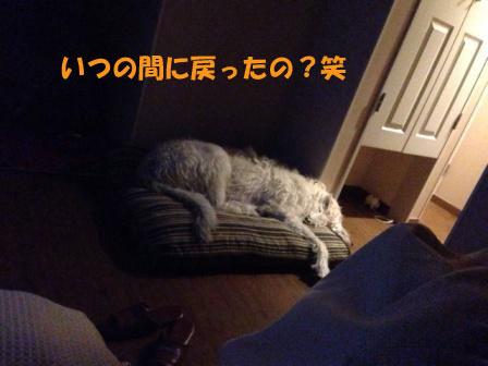 f0176830_16183110.jpg