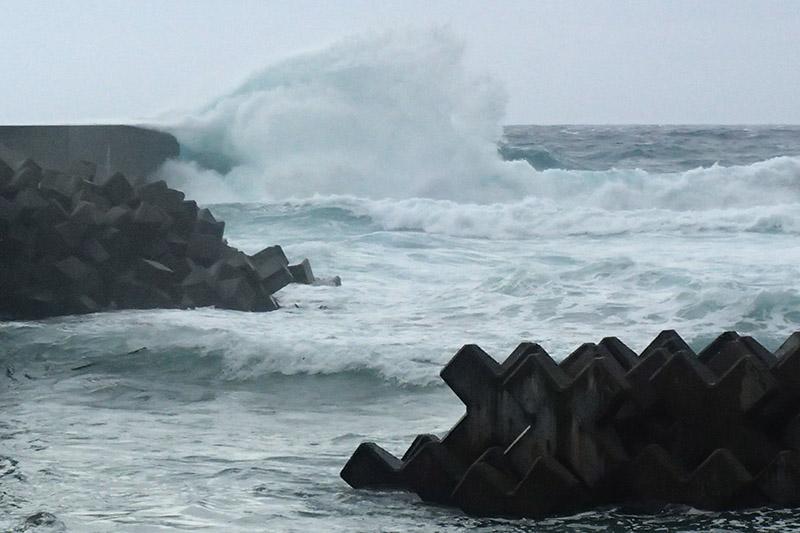 台風26号通過~。_b0186442_20323093.jpg