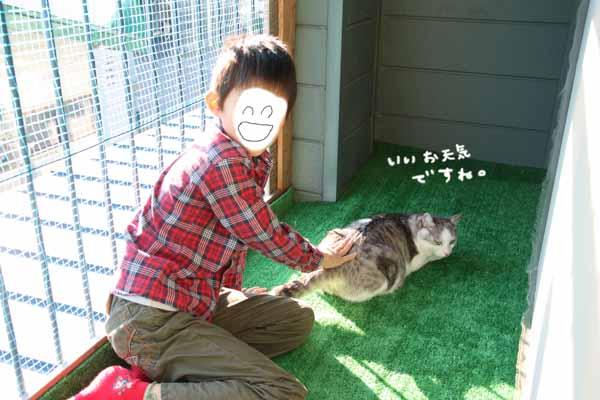 yoikoさんのおうちに♪_b0223446_16185137.jpg