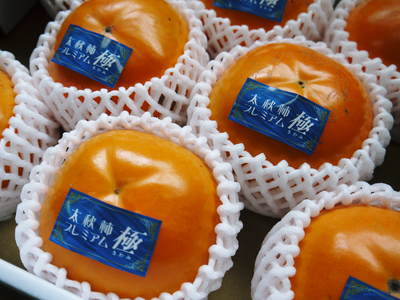 太秋柿 シャキシャキ!!極甘!!やっぱり美味い!!!全国ヘ大好評出荷中です_a0254656_19183020.jpg