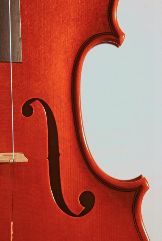 弦楽器フェアのお知らせと、新作ヴァイオリン完成_d0047461_664947.jpg
