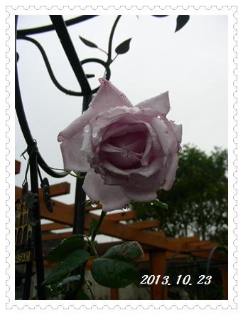 b0096584_1873027.jpg