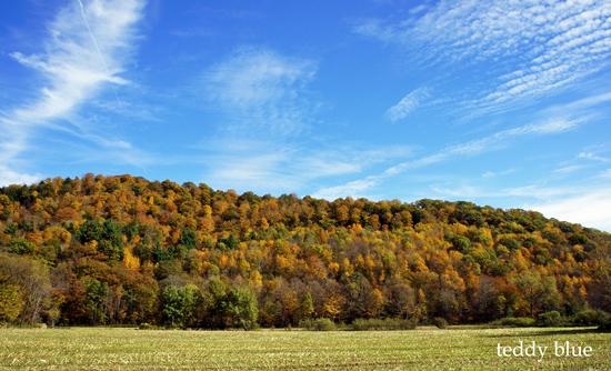fall foliage in Vermont  バーモントの紅葉_e0253364_848554.jpg