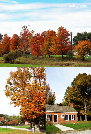 fall foliage in Vermont  バーモントの紅葉_e0253364_8493710.jpg