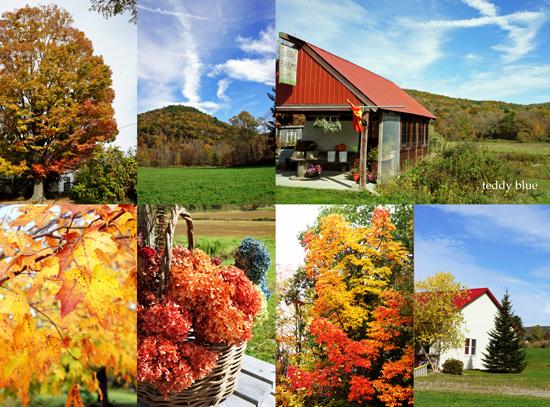 fall foliage in Vermont  バーモントの紅葉_e0253364_8497100.jpg