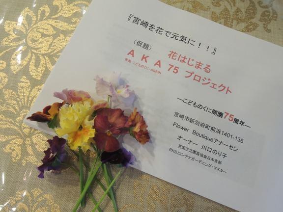 AKA75・・・・青島・こどもの国・again!!75周年プロジェクト_b0137969_20281431.jpg