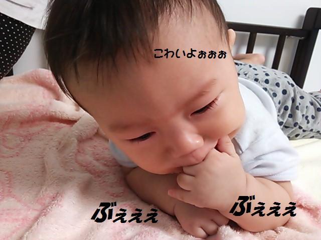 ★掃除機へのリアクション★_d0187891_1552489.jpg