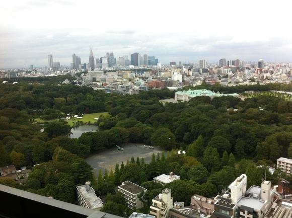 税務調査の新しい是認通知書式、そして赤坂御苑はお忙し_d0054704_037019.jpg