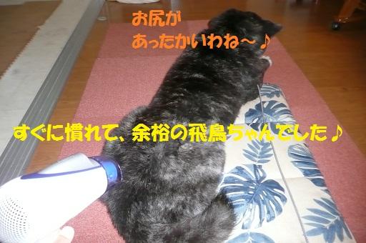 f0121712_10254731.jpg