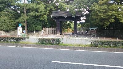 かつら合わせの旅_a0099131_2139619.jpg