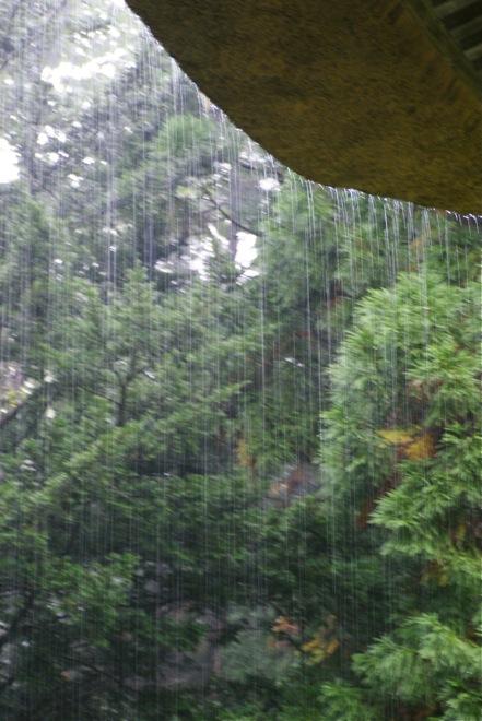 雨続き_d0001843_23553027.jpg