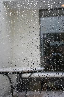 雨上がりに_a0273699_1931976.jpg