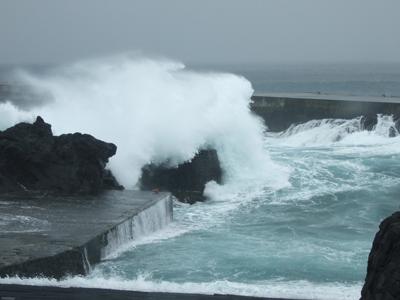 台風27号、陸上は影響なしでした~(^O^)_b0189640_163471.jpg