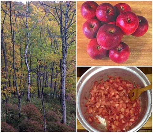 紅葉とリンゴの季節_a0204089_858464.jpg