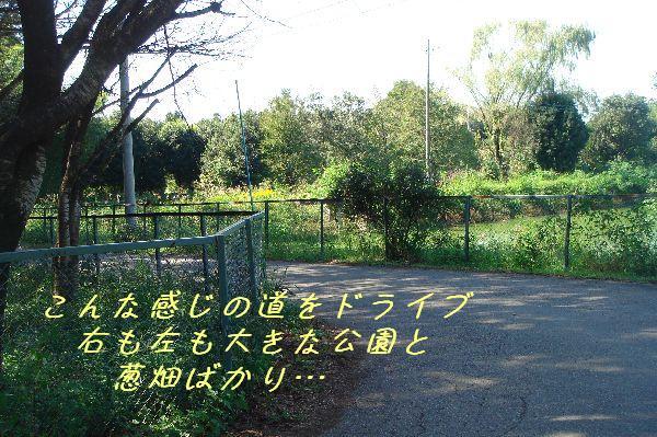 b0101991_1413596.jpg