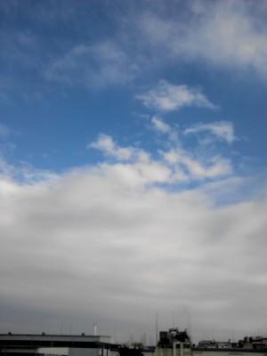 台風が通り過ぎて。。。_c0223192_1823254.jpg