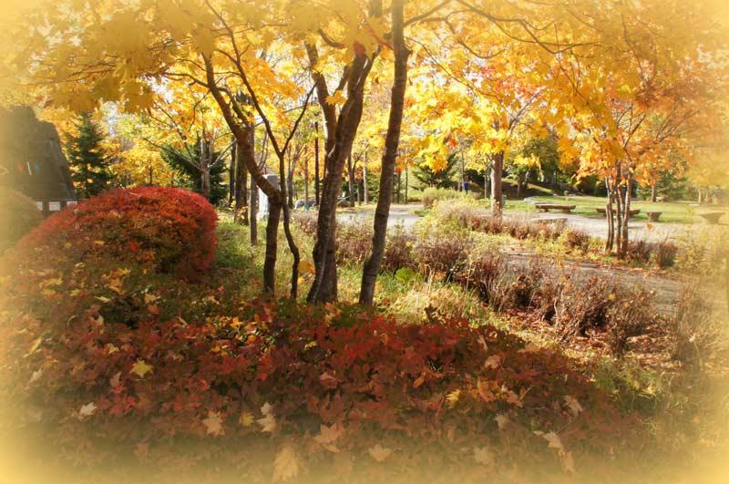 滝野すずらん公園・2_d0162994_8564466.jpg