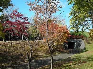 モエレ沼公園秋色_f0078286_12402436.jpg