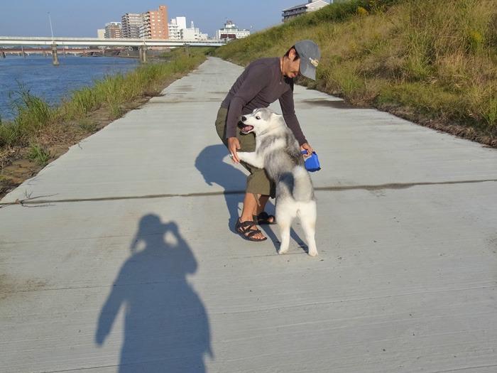 お散歩やっほー♪_c0049299_8343840.jpg