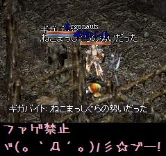 f0072010_3371218.jpg