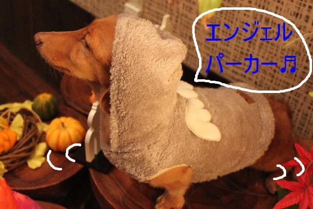こんばんわぁ~~!!_b0130018_21494771.jpg