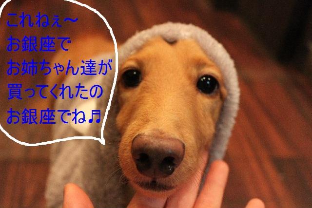 こんばんわぁ~~!!_b0130018_2150150.jpg