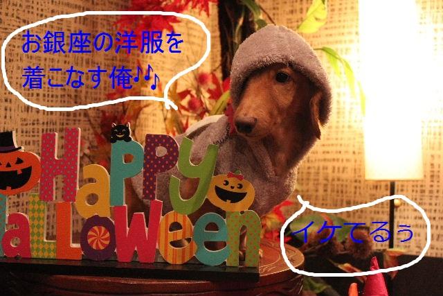 こんばんわぁ~~!!_b0130018_2150786.jpg