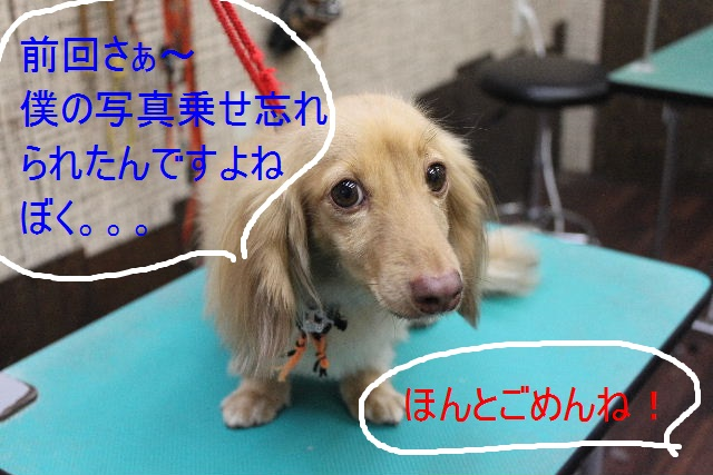 こんばんわぁ~~!!_b0130018_21521935.jpg