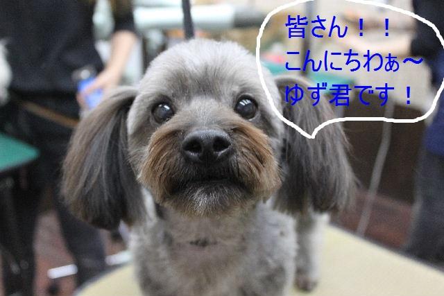 こんばんわぁ~~!!_b0130018_21571433.jpg