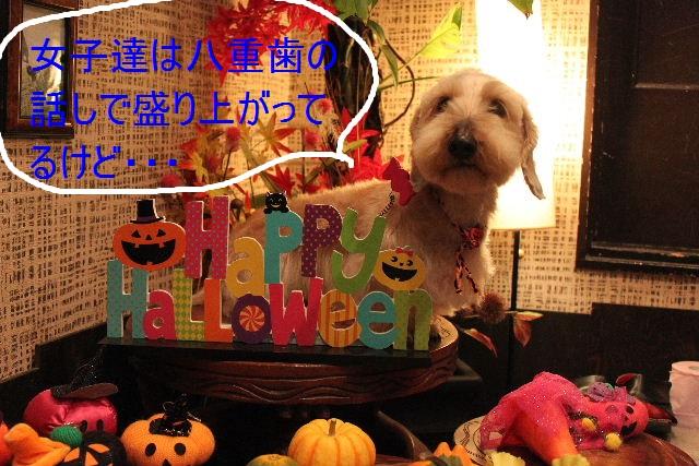 こんばんわぁ~~!!_b0130018_21575634.jpg
